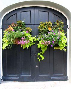 Charleston Green Front Door Garden Gates 30 Ideas For 2019 Front Door Planters, Garden Planters, Herbs Garden, Hanging Planters, Hanging Baskets, Container Plants, Container Gardening, Flower Containers, Green Front Doors