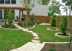 Backyard Lawn  Design My Yard  Austin, TX
