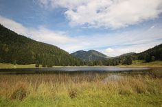 See 2 photos from 7 visitors to Seewaldsee. 2 Photos, Mountains, Nature, Travel, Nature Reserve, Round Round, Naturaleza, Viajes, Destinations