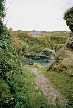 (King of) Prussia Cove, Cornwall Wonderful Places, Great Places, Places To See, Beautiful Places, West Cornwall, Devon And Cornwall, Cornwall Beaches, Into The West, Wale