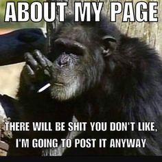 Just letting you know what's up   #instafit #instacool #instagood #ape #monkey #savage #shenanigans #zerofucksgiven #nofucksgiven #funnymemes #funnyshit #notmyproblem #justsaying #exercise #workout #realtalk #isymfs #aesthetics #transformationtuesday #instahealth #strong #muscle #ladies #fitness #fitfam #fitspo #mensphysique #fitchicks #fitgirls #bodybuilding
