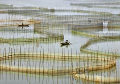 Labyrinth  of nets by Thierry Bornier on 500px