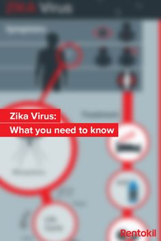 Last month the WHO declared the Zika virus a global public health emergency. Find out everything you need to know about zika in our new blog. #Zika #Mosquitoes