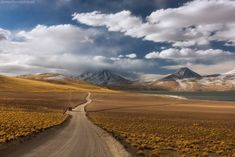 Дорога зовёт!. На третий день нашего путешествия по Атакаме мы добрались до высокогорных лагун Мисканти и Миникес. Высота здесь уже больше четырех тысяч! Организм потихоньку привыкает к такой высоте, хотя нехватка кислорода уже остро чувствуется. Здесь всего небольшая стайка фламинго, но зато шапки высоких вулканов великолепны, с глубоким темным небом над ними. #Атакама #Чили Author: Даниил Коржонов