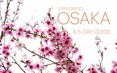 Exploring Osaka: A 5-Day Guide
