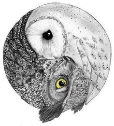 Love this owl yin yang drawling! | Tattoo Ideas Central