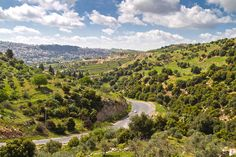 Greenscape Amman (Jordan) by bashar alaeddin, via 500px