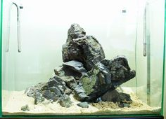 Nature Aquarium, Aquascaping, Layout, The Incredibles, Plants, Terrariums, Aquarium, Sketch, Rocks