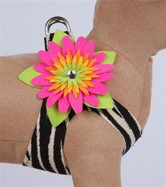 Ribbon Crafts, Flower Crafts, Puppy Cuddles, Flower Choker, Designer Dog Clothes, Puppy Collars, Dog Boutique, Weenie Dogs, Puppy Clothes