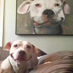 When art imitates life. Or life imitates art. Or... F**kit, someone just get me a Scooby snack.  #pitbullsmile, #brinks #adoptdontshop #dontbullymybreed #pitbull #pibble #pitbulllife #pitbulladvocate #bslsucks #showoffyourpitties #pitbullsofig #happy #smile  #pitbullgram #apbt #bully #dogsofinstagram #dog
