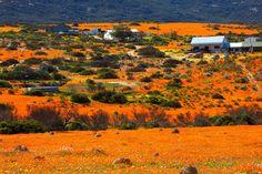 As die stilte roep: 8 afgeleë Karoo-blyplekke - LekkeSlaap Blog