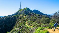 Spring Hike in Los Angeles #mountain #hollywood #climbing #blue #park #green #griffith #morning #clear #sky #beautiful #scenic #hiking #hike #hikes #spring #california #losangeles #la #visit #usa #city #калифорния #лосанджелес #friendlylocalguides