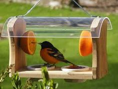 bird feeder houses plans - Google Search