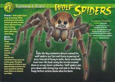 Were-Spider