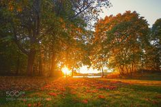 Autumn colors by spikerbagger. Please Like http://fb.me/go4photos and Follow @go4fotos Thank You. :-)