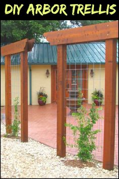 What would you grow if you had this trellis in your yard?