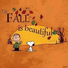 Fall is Beautiful autumn leaves charlie brown fall snoopy peanuts autumn quote happy fall fall greeting fall quote Snoopy Love, Snoopy And Woodstock, Baby Snoopy, Totoro, Chillout Zone, Snoopy Quotes, Peanuts Quotes, Bd Comics, Charlie Brown And Snoopy
