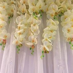 LCL Designs is Celebrating LOVE💜 Cascading Orchids and Spearhead Crystals flowing off the backdrop #lcldesigns #weddingdecor #eventdecor #eventplanner #lcldesignweddings #orchids #crystals #traditionalengagement #floralbackdrop #cascadingorchids #crystalbackdrop #love orchids #eventdecor #crystalbackdrop #floralbackdrop #love #weddingdecor #traditionalengagement #cascadingorchids #lcldesigns #crystals #eventplanner #lcldesignweddings