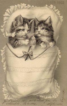 Vintage postcard (1902)