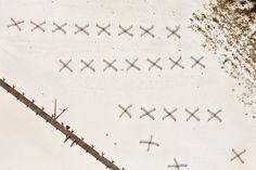 いつも空高くから世界を見てきた......飛行機から撮った写真に言葉が出ない