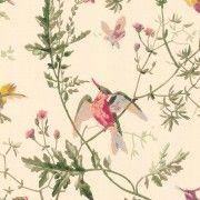 Papier peint Vert; Bleu Hummingbirds de Cole and Son