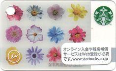 Mini Flowers Starbucks Cards - 2014