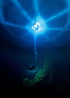 Oh yeah.. Ice dive! Good fun... scary, but fun!!