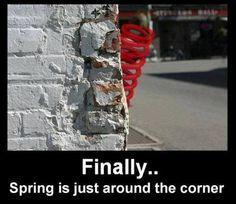 Finally..spring is just around the corner..