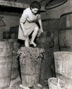 A woman stomping grapes for wine in Frascati, Italy. Nostalgic Pictures, Vintage Pictures, Old Pictures, Old Photos, Vintage Italy, Vintage Wine, Foto Poster, Photo Vintage, In Vino Veritas