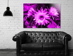 Discover «Cactus Flowers magenta 1389», Numbered Edition Acrylic Glass Print by Barbara Fraatz - From $85 - Curioos Framed Art Prints, Canvas Prints, Welcome Gifts, Clear Acrylic, Magenta, Buy Art, Cactus, Things To Come, Thing 1