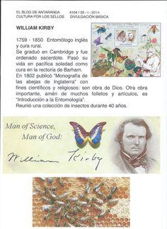 WILLIAM KIRBY - encina 3