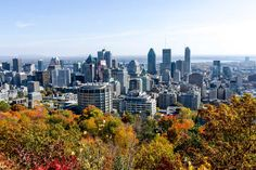 Things to Do in Montreal Before You Die: A Must-Do Bucket List - Thrillist Quebec, Rue Sainte Catherine, Stuff To Do, Things To Do, Fireworks Festival, Montreal Museums, Old Montreal, Royal Park, Destinations