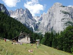 Malga di Andalo - Trentino  © Luca Castellan