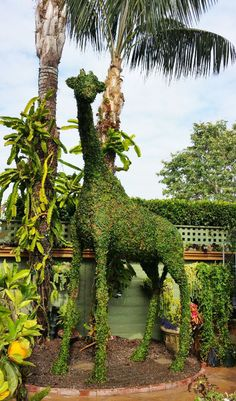 'Topiary Joe' Kyte uses grass and metal frames to create sculptures.