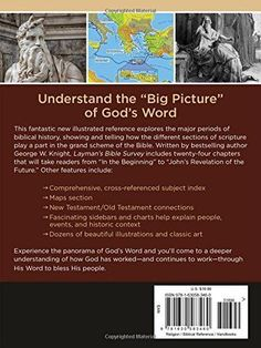 """Layman's Bible Survey: An Illustrated, """"Big Picture"""" Guide to All of God's Word"""