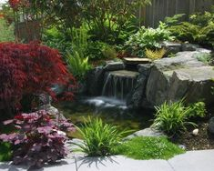 Landscape Pathways That Go Thru Pond Areas Design, Pictures, Remodel, Decor and Ideas - page 3