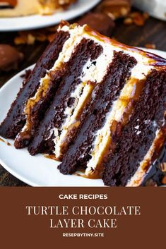 This Turtle Chocolate Layer Cake starts with rich, decadent and moist chocolate . - This Turtle Chocolate Layer Cake starts with rich, decadent and moist chocolate cake layers that ar - Layer Cake Recipes, Best Cake Recipes, Sweet Recipes, Dessert Recipes, Dinner Recipes, Cake Filling Recipes, Cupcake Recipes, 2 Layer Cakes, Cake Recipes From Scratch