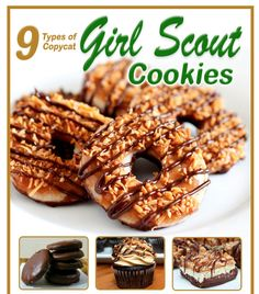 Nine Girl Scout Cookies Copycat Recipes. This FREE ebook offers 9 Types of Copycat Girl Scout Cookies: Your Favorite Copycat Girl Scout Cookie Flavors for you to make at home! Girl Scout Cookies Flavors, Cookie Flavors, Cookie Desserts, Just Desserts, Cookie Recipes, Delicious Desserts, Dessert Recipes, Yummy Food, Cookbook Recipes