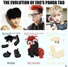 Sadly i do not own Tao but the pandas are from me ^^ thought it would be funny to make an evolution of our panda ;D oh god he is too adorable Credit pho. The Evolution of Exo's Panda Tao Tao Exo, Chanyeol Baekhyun, Exo K, Huang Zi Tao, Kim Minseok, Exo Ot12, Kung Fu Panda, Exo Memes, Korean Entertainment