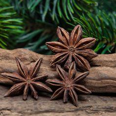 Aprenda no artigo como fazer banhos energéticos com anis estrelados para atrair confiança, boa sorte, amor, aliviar cansaço e desenvolver espiritualidade