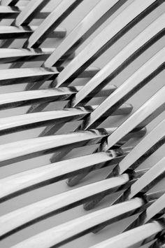 """Saatchi Online Artist: Natalie Kinnear; Black & White, Photography """"Forks I"""""""
