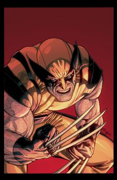 Wolverine by Steve Mc Niven Colored by Nicolas Chapuis