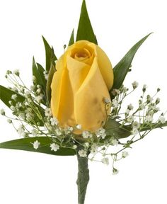 ROSE BOUTONNIERE WITH BB, YELLOW - A boutonniere with one Yellow Rose and babies breath Item #1366.
