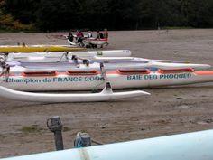 Idée #21 - Aller à la rencontre des phoques de la baie de Somme en pirogue Polynésienne - #baiedesphoques #phoque #safari