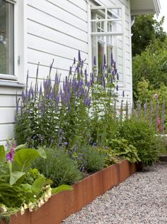 I like this flower bed. Curb Appeal raised plant beds I like this .I like this flower bed. Curb Appeal raised plant beds I like this flower bed. Back Gardens, Small Gardens, Outdoor Gardens, Plants For Raised Beds, Raised Garden Beds, Raised Flower Beds, Home Landscaping, Landscaping With Rocks, Garden Cottage
