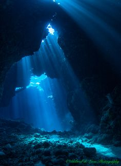 """Serenity"" Magical lighting penetrates underwater cavern... ‪St‬.John's Reef"
