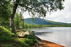 Punaisella hiekalla. Kuva: Maarit Kyöstilä Finland, National Parks, Mountains, Nature, Travel, Beautiful, Viajes, Naturaleza, Destinations