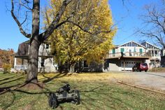 Manor House, canon, and mighty Ginko tree - Wedding & Event Venue / Bed & Breakfast - VA Blue Ridge Mountains
