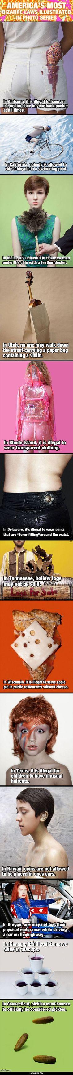 Americas Most Bizarre Laws#funny #lol #lolzonline