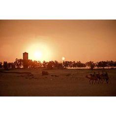 Hoy he tenido nostàlgia de esas que quieres volver a viajar... Ya han pasado casi 6 años de nuestro segundo viaje internacional destino Túnez.  A ver si organizamos uno con nuestro pequeño.... #nostàlgia #viaje #Túnez #Tunis #landscape #paisaje #paisajedesertico #desierto #desiertotunez #sinfiltros #nikon #nikond300 #instaxbts17 #instal #bts17